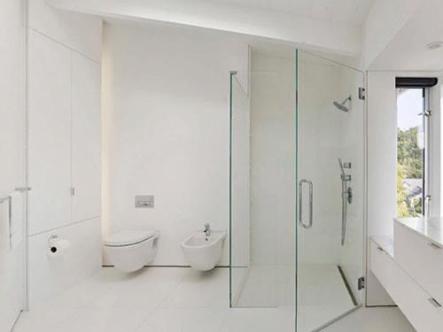 Белая ванная комната с перегородкой из стекла между душем и унитазом